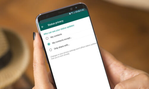 How to See the status of someone on WhatsApp without knowing him/her