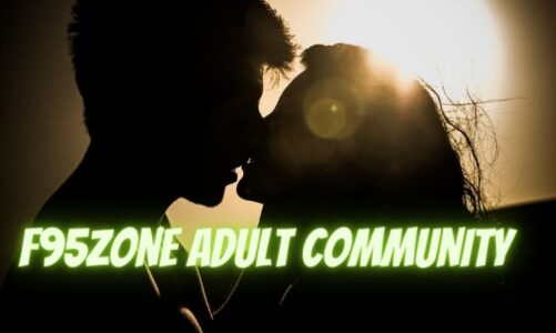 Details you shouldn't miss about the F95Zone adult community